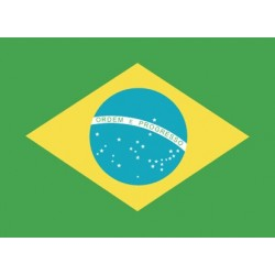 Brazil networks